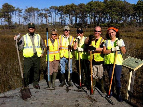 Volunteer teams help repair erosion at Assateague National Seashore, home of Misty of Chincoteague (NPS photo)