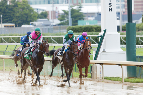 Horses finish a muddy race at Churchill Downs. Photo by Alexey Stiop