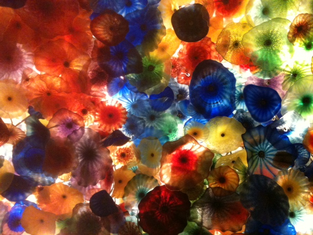 Each 2 or 3 foot wide flower is amazing. Taken together, they dazzle. Photo by J Emmons