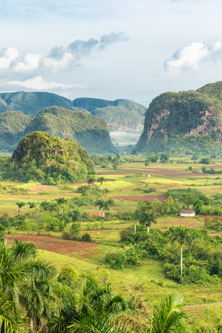 Cuba is a large island with many beautiful areas such as the Vinales Valley. Photo by Kmiragaya | Dreamstime.com