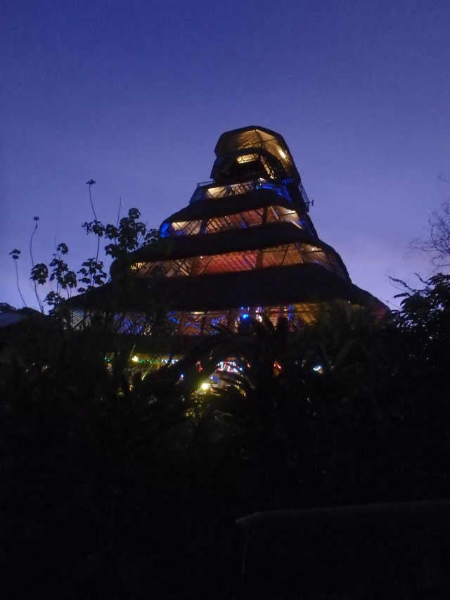 This is the Napo Main Lodge, a tall building built on a rise. Photo by G. Emmons